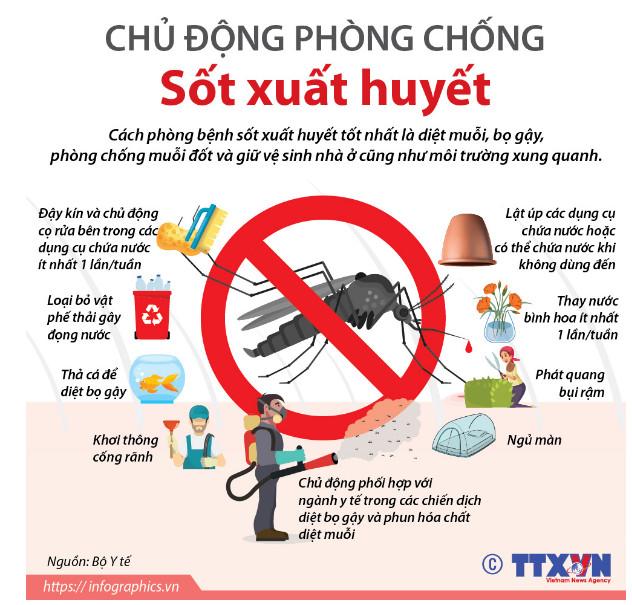 Khuyến cáo phòng chống sốt xuất huyết